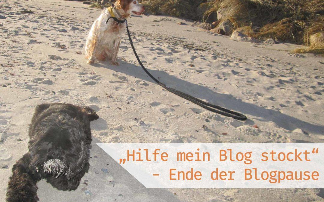 Artikelbild Hilfe mein Blog stockt