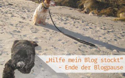 """""""Hilfe, mein Blog stockt!"""" – Ende der Blogpause"""