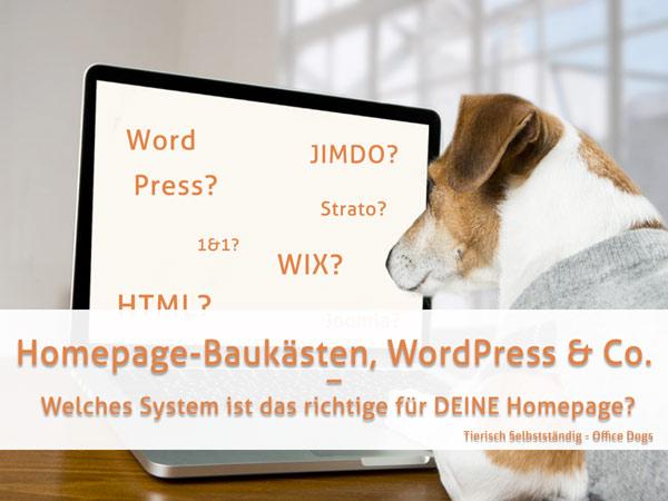 Homepage-Baukästen, WordPress & Co. – Welches System ist das richtige für deine Homepage?