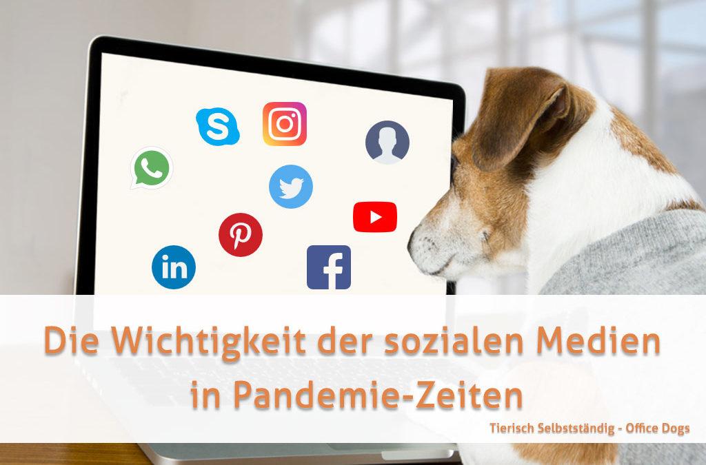 Die Wichtigkeit der sozialen Medien in Pandemie-Zeiten