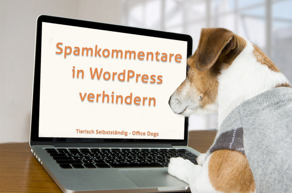 Spamkommentare in WordPress verhindern